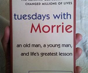book and tuesdays with morrie image
