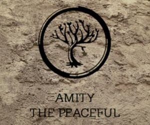 amity and divergent image