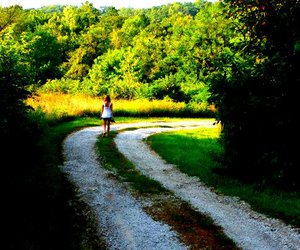 girl, light, and trees image