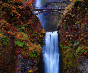 waterfall, nature, and bridge image