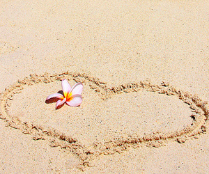 summer, flower, and heart image