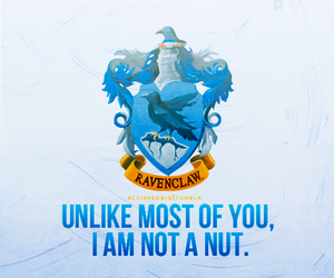 ravenclaw and house pride image