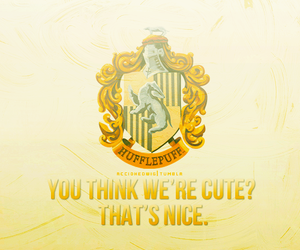 harry potter, hufflepuff, and house pride image