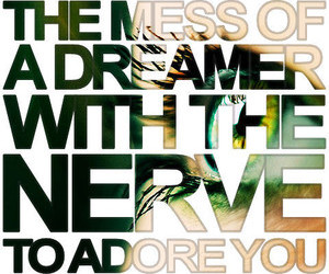 adore and dreamer image