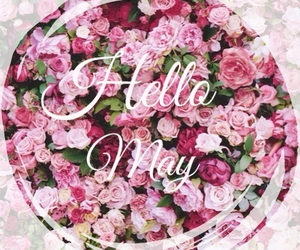 flowers, may, and hellomay image
