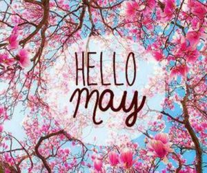 flowers, girly, and may image