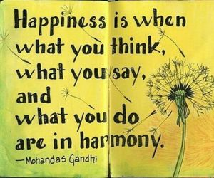 quotes, happiness, and harmony image