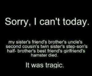 funny, tragic, and sorry image