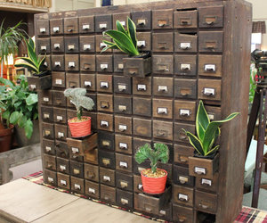antique, apothecary, and storage image
