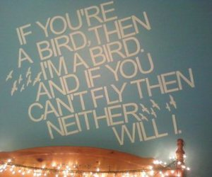 bird, quote, and the notebook image