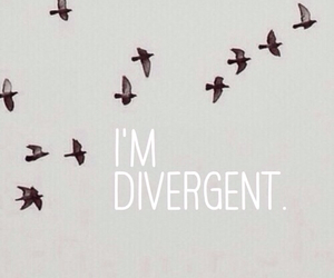divergent and i'm image
