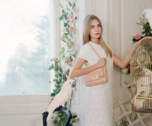 fashion, mulberry, and cara delevigne image