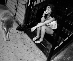 black and white, wolftyla, and dog. image