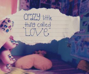 love, crazy, and text image
