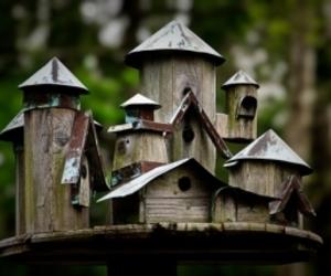 bird houses image