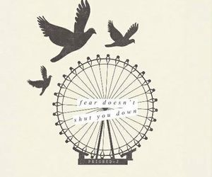 divergent, four, and birds image