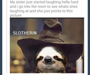 HAHAHA, harry potter, and laugh image