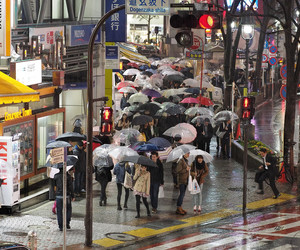 chuva, guarda-chuva, and japan image