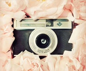 camera, flowers, and pink image
