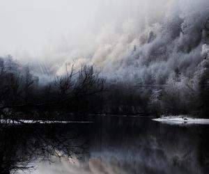 nature, lake, and dark image