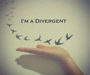 divergent, bird, and book image