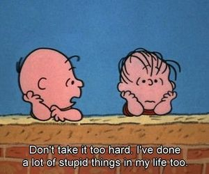 quotes, life, and stupid image