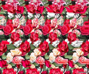 heart, inside, and roses image