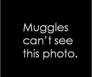 harry potter, muggles, and photo image