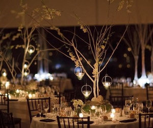 beautiful, centerpieces, and trees image