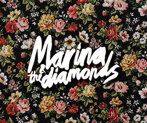 marina & the diamons image