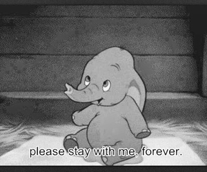 forever, dumbo, and stay image