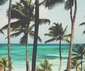 beach, hair, and sun image