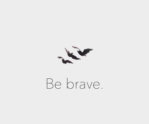 be brave, birds, and brave image