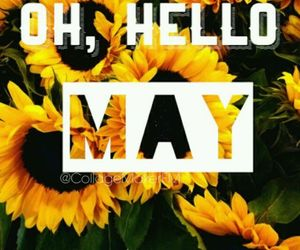 flowers, month, and hello image