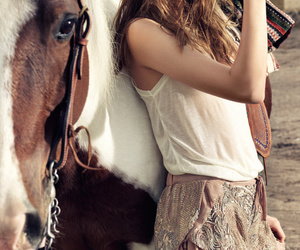 horse and style image