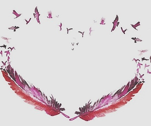 bird, feather, and heart image