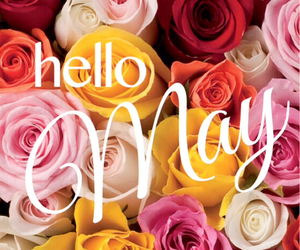 flowers, may, and rose image