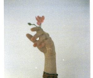 flowers, hand, and vintage image