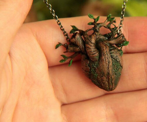 heart, nature, and krinna image