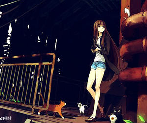 anime, girl, and cat image