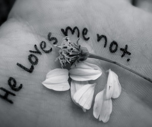love, flowers, and black and white image
