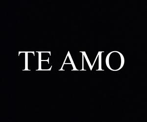 black and white, te amo, and love image