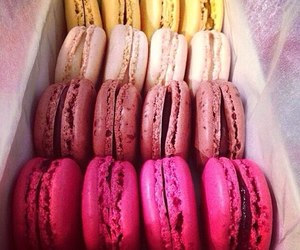 colors, macarons, and desserts image