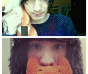 foxes, youtubers, and christian novelli image