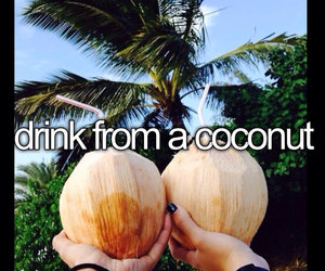 coconut, happy, and paradise image