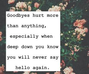 goodbye, quote, and hurt image