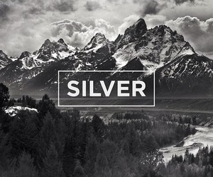 silver, the neighbourhood, and black image
