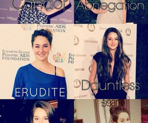 factions and Shailene Woodley image