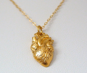 heart, charm, and necklace image
