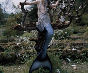 mermaid, fantasy, and tim walker image